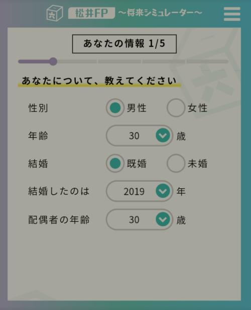 松井FP 入力画面